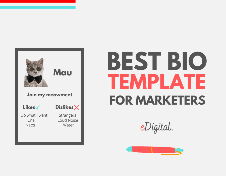 Best professional biography template for marketers