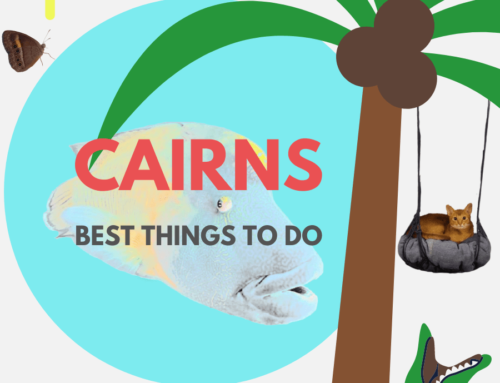 THE BEST 17 THINGS TO DO IN CAIRNS REGION, QLD TOP LIST